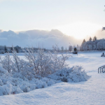 Walking tour uncovers Iceland's Christmas and cultural traditions