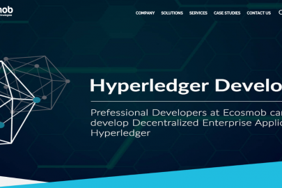 Ecosmob's Hyperledger Blockchain Development Solutions